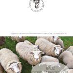 Kartka z Dobrym Pasterzem wzór 2